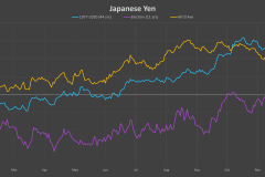 JPY-election-cycle
